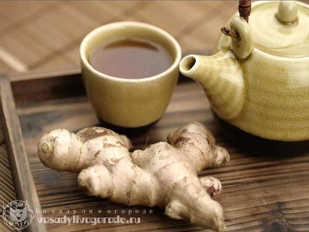 Имбирь и чай
