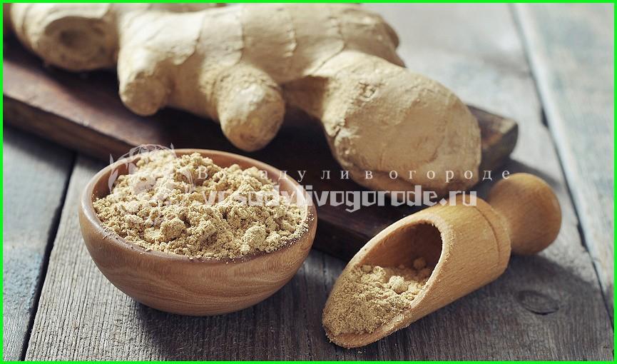 рецепты, для похудения, польза, противопоказания, корень, маринованный, чай с имбирем, самогон на имбире