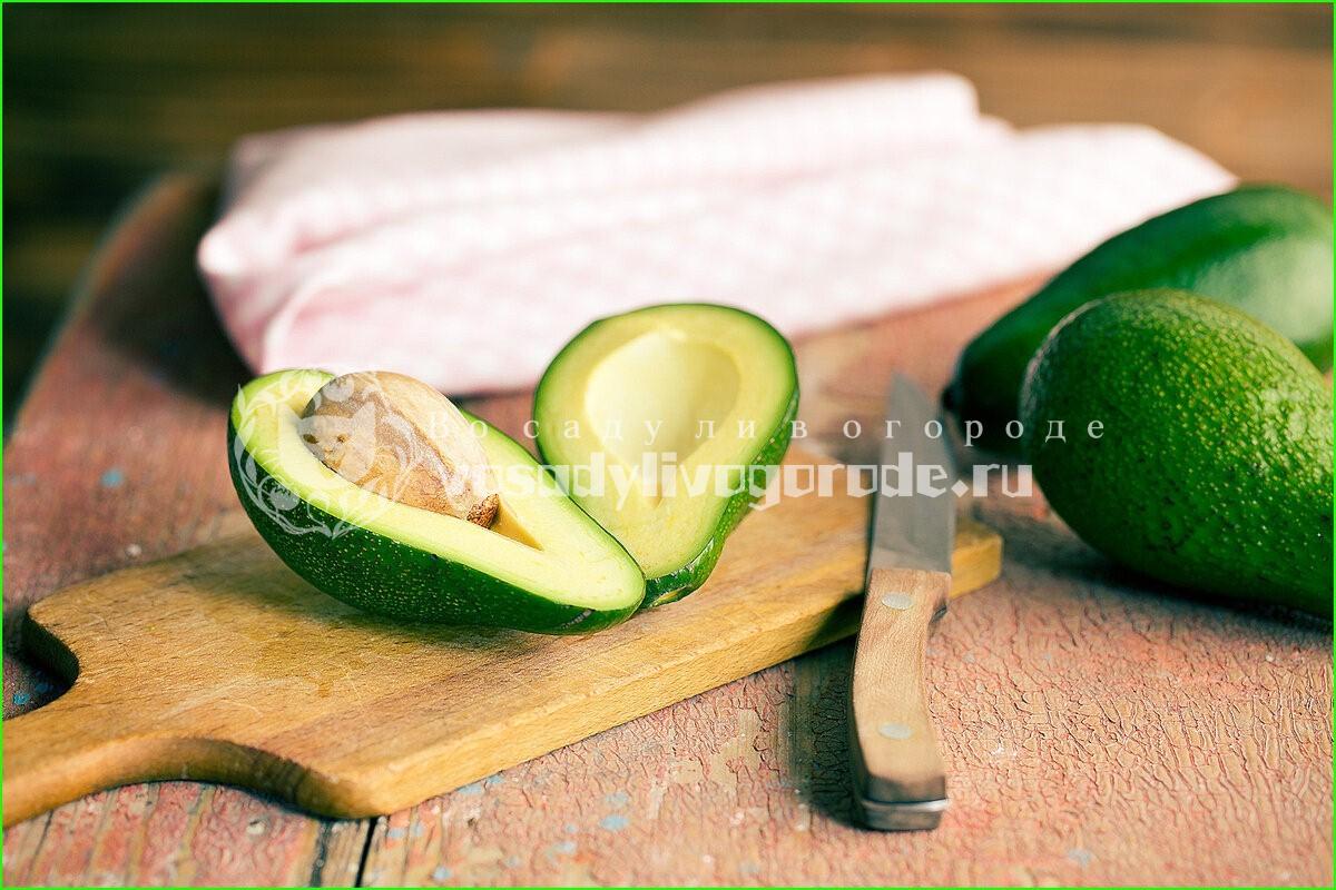 фрукт, овощ, полезные свойства, вред, выращивание, уход