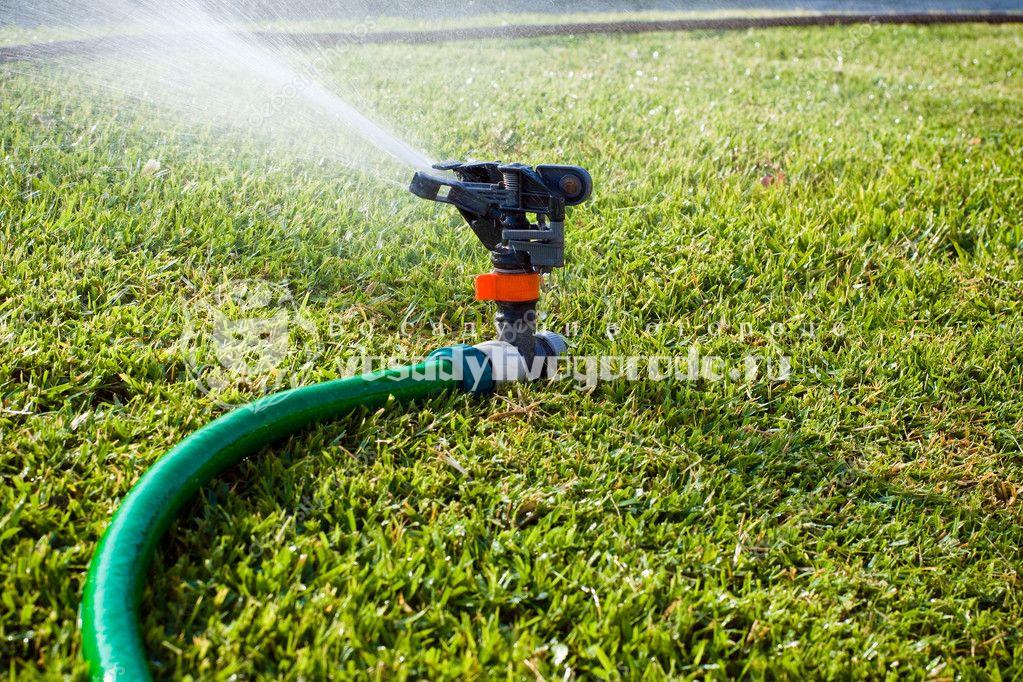 Поливать газон