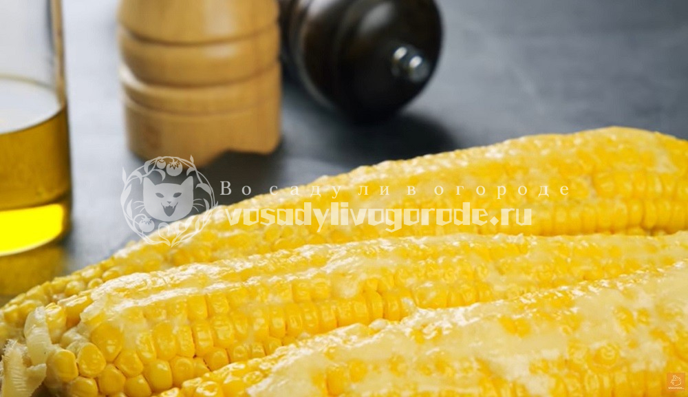 Кукуруза под соусом