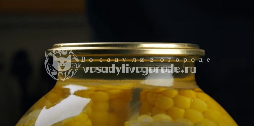 Закатать банку с кукурузой