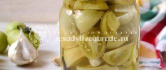 Салат из зеленых помидоров